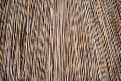 Tło dach, sucha trawa lub siano pokrywający strzechą, Tekstura wysuszona trawa Zdjęcia Royalty Free