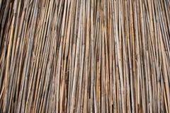 Tło dach, sucha trawa lub siano pokrywający strzechą, Tekstura wysuszona trawa Obraz Royalty Free