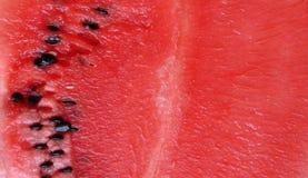 Tło dojrzały, czerwony arbuz w jadalnej sekci, Obrazy Royalty Free