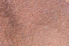 Tło dywanowa tkanina w zakończeniu up Zdjęcia Stock