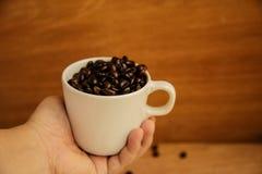 tło fasoli piękną kawową kuchni powiązana konsystencja Obraz Royalty Free