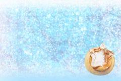 Tło gwiazdowego wzoru lód z słodkim bławym bokeh Zdjęcia Royalty Free