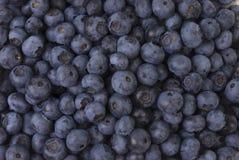 tło jagodowe Fotografia Stock