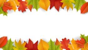 Tło - jesień - liście - ulistnienie Zdjęcie Stock