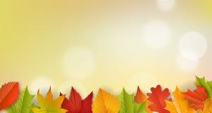 Tło - jesień - liście - ulistnienie Obraz Stock