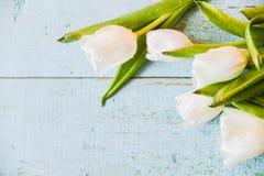 Tło, kartka z pozdrowieniami: bukiet stubarwni tulipany na lekkim tle Układ, mocap, dla twój tekst matki dnia, copys Obraz Royalty Free