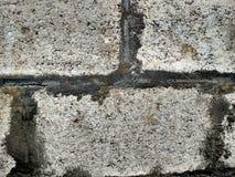 Tło kolekcja - gęsta warstwa cement na ziemi fotografia stock