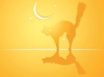 tło kot Halloween Obraz Stock