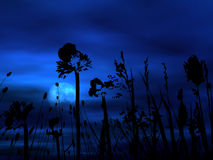 tło kwiecisty księżyca Zdjęcie Royalty Free
