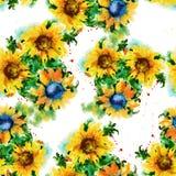 Tło kwitnie słonecznika bezszwowy wzoru akwareli illus Fotografia Royalty Free