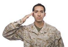 tło latynos salutuje żołnierza biel Obraz Stock
