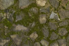 Tło mechata i szara zielona kamienna ściana fotografia royalty free