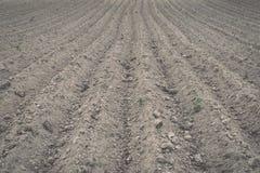 Tło niedawno zaorany śródpolny przygotowywający dla nowych upraw - rocznik e Fotografia Stock