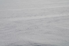 Tło od firmowego śniegu w stepie 16 Obraz Stock