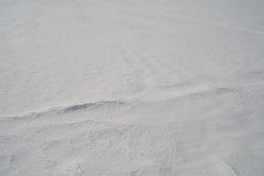 Tło od firmowego śniegu w stepie 18 fotografia royalty free