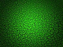 tło pękająca zieleń Zdjęcia Royalty Free