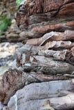 Tło, parawanowy ciułacz Montenegro, Europa - piękna sekcja skała - fotografia stock