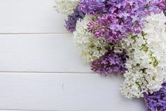 Tło, rama z gałąź bez w różnych kolorach, bez i purpury - biel, Zdjęcia Stock