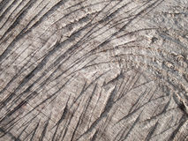 Popielaty drewno Obrazy Royalty Free