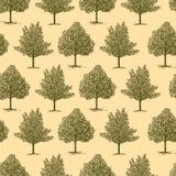 tło rysujący ręki drzewa Obrazy Stock