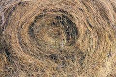 Tło słomiana tekstura, spirala wzór obraz stock
