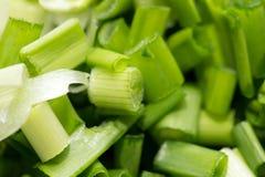 Tło siekać zielone cebule Makro- Zdjęcie Royalty Free