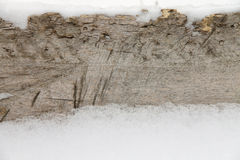 Tło stary śnieg i drzewo Zdjęcie Stock