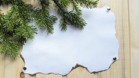 Tło stary papier, drewno i sosna, rozgałęzia się Fotografia Stock
