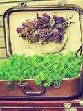 tło szczegółów tekstury okno stary drewniane Stary retro rocznik walizek valise na drewnianych deskach Zbieracki zgromadzenie w s Zdjęcie Stock