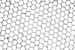 tło tła honeycomb Obraz Royalty Free