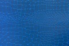 tło tekstura błękitny rzemienna Zbliżenie fotografia Obraz Stock