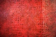 Tło tekstura czerwona wąż skóra Obrazy Stock