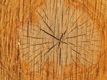 Tło, tekstura końcówka piłujący drzewo obrazy stock