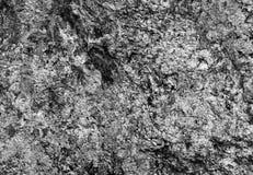 tło tekstura naturalna kamienna Obrazy Stock