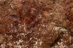 tło tekstura naturalna kamienna Zdjęcia Royalty Free