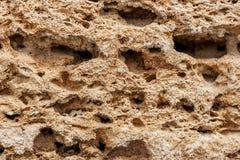 Tło Tekstura wapnia i wapna zamknięty up Tworzący osadowymi skałami Obrazy Stock