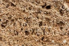 Tło Tekstura wapnia i wapna zamknięty up Tworzący osadowymi skałami Zdjęcia Stock
