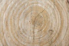 Tło textured drewno adrę ciie bagażnika drzewo Zdjęcia Stock