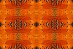 Tło tworzący od motylich skrzydeł Zdjęcie Stock