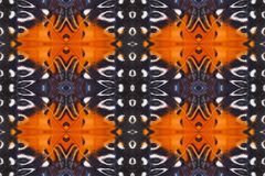 Tło tworzący od motylich skrzydeł Fotografia Stock
