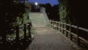 Tło ustanawia strzał parkową noc zdjęcie wideo