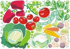 tło warzywa dekoracyjni świezi ilustracji