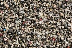 tło wiele żuć guma do żucia Fotografia Royalty Free