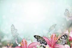 tło wiosna Obrazy Royalty Free