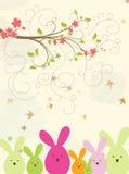 tło wiosna Fotografia Stock