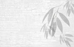 tło wizerunku rastre ceglana ściana Obrazy Stock