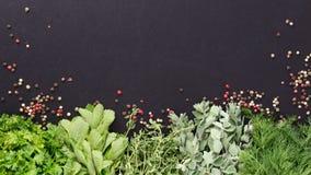 Tło z świeżymi ziele i pieprzem Obrazy Stock