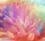 Tło z abstrakcjonistycznym tęcza kwiatem Obraz Royalty Free