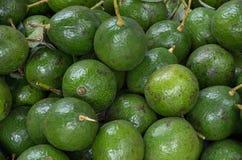 Tło z avocados owoc w Asia rynku obrazy royalty free