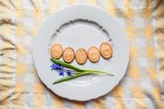Tło z ciastkami w formie Wielkanocnych jajek z ciastkami na szarość talerzu Obrazy Stock